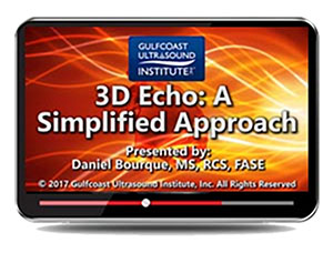 3D Echo:  A Simplified Approach