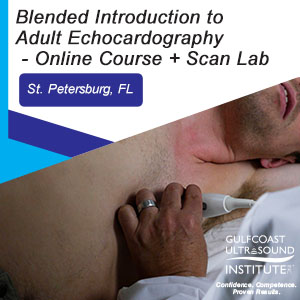 Blended Introduction to Adult Echocardiography