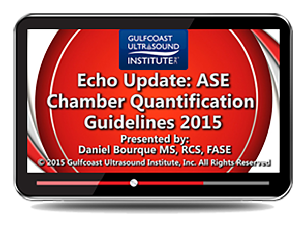 Echo Update: ASE Chamber Quantification Guidelines