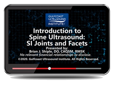 Introduction to Spine Ultrasound: S/I Joints and Facets