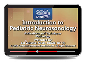 Introduction to  Pediatric Neurosonology