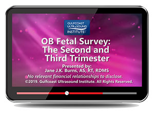 OB Fetal Survey: The Second and Third Trimester