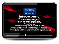 CME - Introduction to Transesophageal Echocardiography